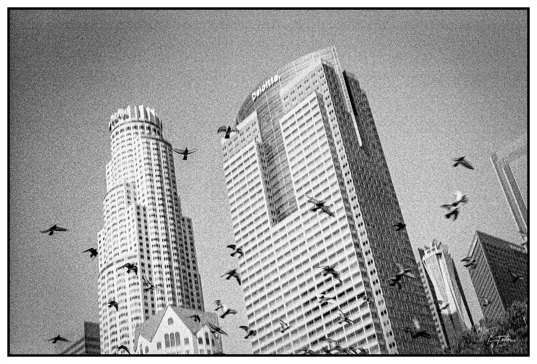 Flight!, ©2020 Reginald Foster