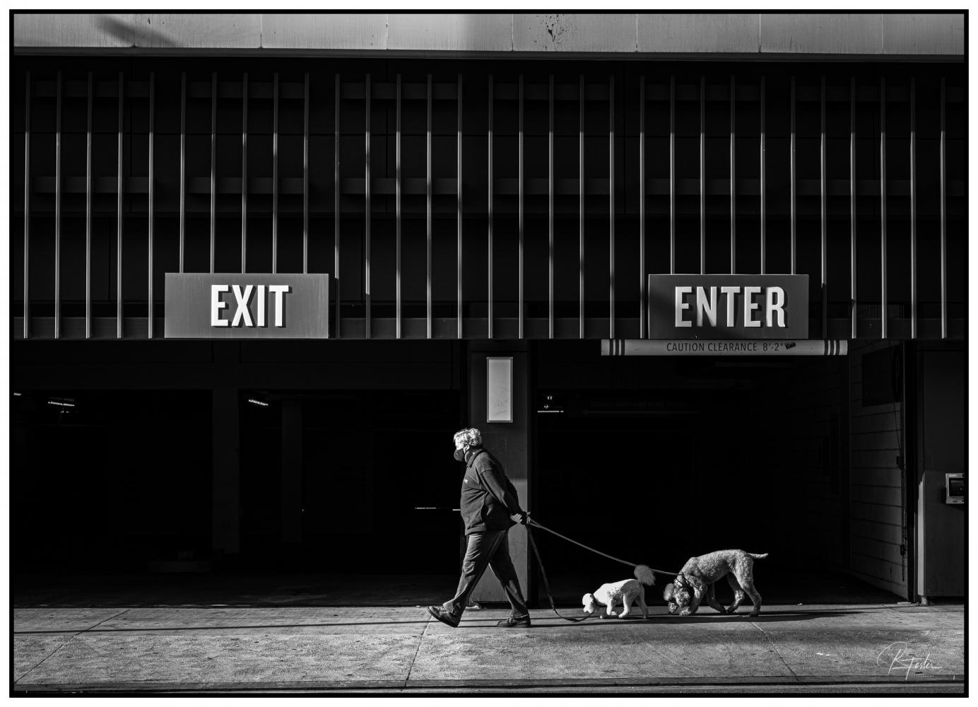 The Morning Walk, ©2021 Reginald Foster
